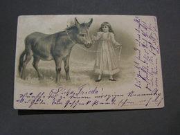 Kind Mit Esel , Obertsdorf 1906 - Esel