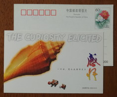 Conch Shell,seashell,the Curiosity Elicited,China 2000 Hainan Friendship Greeting Advertising Pre-stamped Card - Chemistry