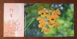 Dendrobium Fimbriatum Hook.,China 2013 Magical Xishuangbanna Wild Orchid Advertising Pre-stamped Card,specimen Overprint - Orchideeën