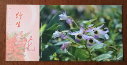 Dendrobium Findlayanum,China 2013 Magical Xishuangbanna Wild Orchid Advertising Pre-stamped Card,specimen Overprint - Orchideeën