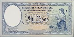 Argentina / Argentinien: Banco Central De La Republica Argentina Offset Printed Front And Reverse De - Argentinien