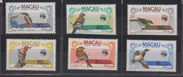 Macao 1984 Oiseaux 495-500 6 Val ** MNH - Macao