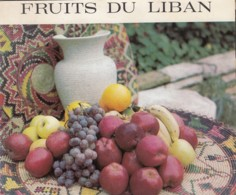 Lebanon Beyrouth Beirut Fruits De Liban Old Guide Brochure Depliant Prospect - Tourism Brochures