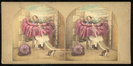 Tinted Stereoview - 'A Stylish Affair' - Crinoline Difficulties - Stereoscopi