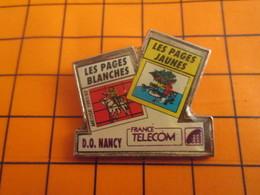 2519 PINS PIN'S / Beau Et Rare : Thème FRANCE TELECOM / ANNUAIRE PAGES JAUNES ET BLANCHES D.O. NANCY - Telecom De Francia