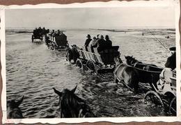 Insolite Photo Originale Voiture Hippomobile Ou Autocar Attelage En Chariot Pour Passage De Chemins & Marées Vers 1930 - Automobiles