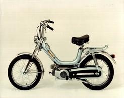 Cricket V1 Testi +-22cm X 17cm  Moto MOTOCROSS MOTORCYCLE Douglas J Jackson Archive Of Motorcycles - Foto's
