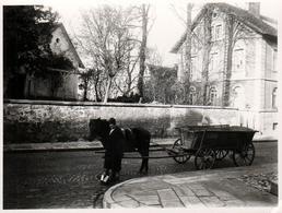 Photo Originale Fermière Et Sa Remorque Attelée En Centre Bourg Vers 1930 - Légende Dos - Métiers