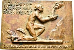 Medaillen Deutschland: Meersburg/Bodensee: Einseitige Bronzegussplakette 1933, Signiert GB. Zur Erin - Deutschland