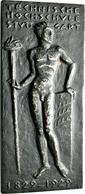 Medaillen Deutschland: Stuttgart: Geschwärzte, Einseitige Eisengussplakette 1929, Auf Das 100-jährig - Deutschland