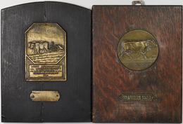 Medaillen Deutschland: Württemberg: Lot 2 Stück; Bronzeplakette 1924, Der Württembergischen Zentrals - Deutschland