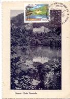 POTENZA BADIA MONTICCHIO    1994 MAXIMUM POST CARD (GENN200012) - Geografia