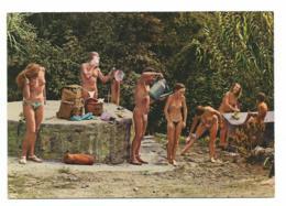 FEMME NU ILE DU LEVANT -CARTE ECRITE Voir Detai Annonce - Nudi Adulti (< 1960)