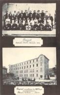 42 LOIRE Personnel De L'Hôpital Auxiliaire Du XIIIème Corps De PELUSSIN Les Croix Guerre 1914 - Pelussin