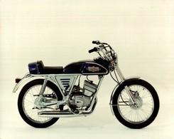 Motori Minarelli Champion Testi +-22cm X 17cm  Moto MOTOCROSS MOTORCYCLE Douglas J Jackson Archive Of Motorcycles - Foto's
