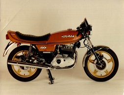 Ducati500 Desmo +-24cm X 17cm  Moto MOTOCROSS MOTORCYCLE Douglas J Jackson Archive Of Motorcycles - Photographs