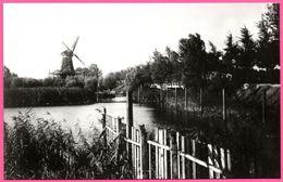 Dordrecht - Langs Oranjelaan Naar Noordendijk Molen De Nachtegaal Omstreeks 1910 - Foto W. MEIJERS - Edit. KOOS VERSTEEG - Dordrecht