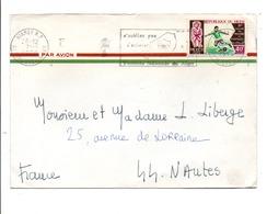 NIGER LETTRE AVION POUR LA FRANCE 1970 - Niger (1960-...)