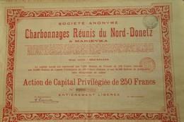 Société Anonyme Des Charbonnages Réunis Du Nord-Donetz à Marievka - 1905 - Mines