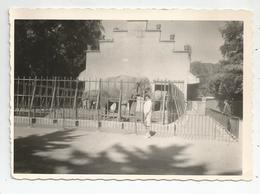 Photographie Zoo éléphant 1964 Parc Tete D'or Lyon   Photo 9x12,5 Cm Env - Luoghi