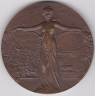 ARGENTINA, Buenos Aires, Medal 1910 - Gettoni E Medaglie