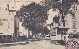 EPINAL / Avenue De La Loge-blanche - Epinal