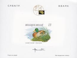 Projet Non Adopté N° 11  - Canard Colvert - André Buzin - Belgique