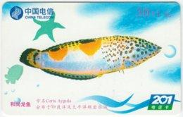 CHINA B-124 Prepaid ChinaTelecom - Painting, Animal, Sea Life, Fish - Used - China
