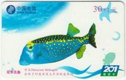 CHINA B-125 Prepaid ChinaTelecom - Painting, Animal, Sea Life, Fish - Used - China