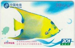 CHINA B-126 Prepaid ChinaTelecom - Painting, Animal, Sea Life, Fish - Used - China