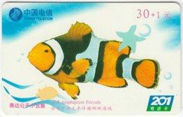 CHINA B-127 Prepaid ChinaTelecom - Painting, Animal, Sea Life, Fish - Used - China