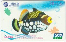 CHINA B-129 Prepaid ChinaTelecom - Painting, Animal, Sea Life, Fish - Used - China