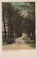 Nijmegen - Laan Meerwyk - 1907 - Nijmegen