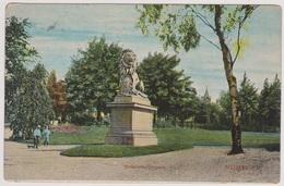 Nijmegen - Kronenburgerpark - Tulpkaart 1906 - Nijmegen