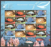 D315 2013 ASCENSION ISLAND FISH & MARINE LIFE #1098-101 MICHEL 48 EURO 1SH MNH - Meereswelt