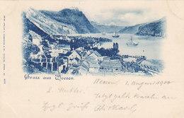 Gruss Aus Weesen - UPU-Frankatur - Stabstempel - 1900       (P-206-90427) - SG St. Gall