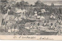 L170A066  - Groupe De Bébés Dans La Nature Accompagné  Par Des Cigognes  - Carte Précurseur B.K.W.I Série N°765-1 - Neonati