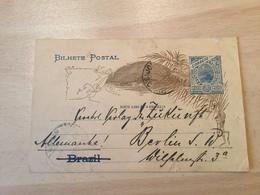 GÄ26291 Brasilien Ganzsache Stationery Entier Postal Used Psc From Joinville To Berlin - Postwaardestukken