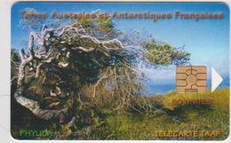 #04 - TAAF-02 - TAAF - Terres Australes Antarctiques Françaises