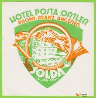 Voyo HOTEL POSTA ORTLER Solda Italy Hotel Label  Early Printing  Vintage - Hotel Labels