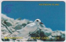 #04 - ASCENSION-02 - BIRD - 3CASB - Ascension