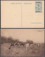 Ruanda-Urundi - Entier Postal 45 C En Carte Postale. Nr. 7-Vue: Ëlevage Du Bétail.....................(DD) DC6105 - Entiers Postaux