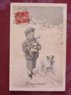 France 1911 Postcard Dog To France - Cani