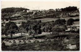 51*MONTMIRAIL-Vue Panoramique - Montmirail