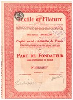 Titre Ancien - Textile Et Filature - Société Anonyme - Titre De 1925 - Textiel