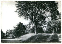 46350 CALÈS - L'église Et L'avenue - CPSM 10,5x15 Véritable Photo - Autres Communes