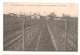 Virelade - Grande Beurrerie Centrifuge - Blancan , Proprietaire - Vue De L'Usine - CPA -  ° - France