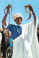 Marokko Marocco Libreria Escolar TANGER  Snake Slang Tandja Tanga    Barry 4594 - Tanger