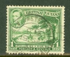 British Guiana: 1938/52   KGVI     SG308   1c  Yellow-green    Used - Guyane Britannique (...-1966)