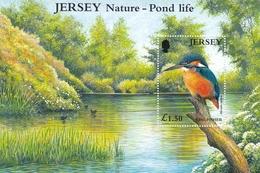 Jersey, 2001, 986 Block 29, Eisvogel, Kingfisher, MNH ** - Jersey